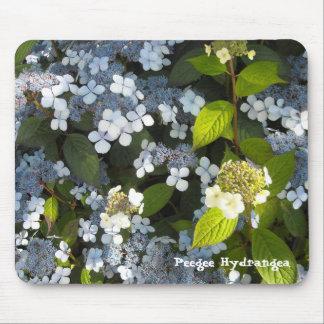 Peegee vanlig hortensia musmatta