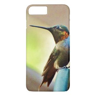 Perched Hummingbird för Ruby och för grönt lite