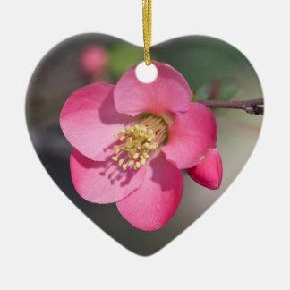 Perfekt rosa blommarQuince Julgransprydnad Keramik