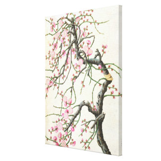 Persikablommar (färg på papper) canvastryck