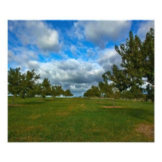 Persikafruktträdgård - den Gettysburg Fototryck
