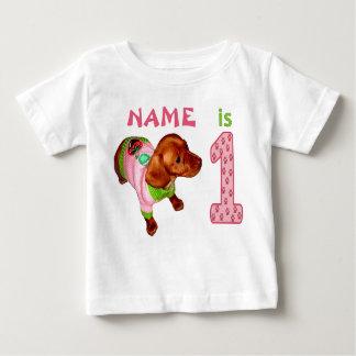 Personifierade 1st födelsedagskjortor för flickor tshirts