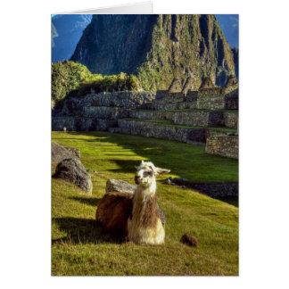 Peru Andes, Andes berg, Machu Picchu, 2 Hälsningskort
