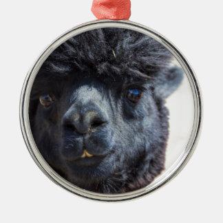 Peruansk Alpaca med galet hår Julgransprydnad Metall