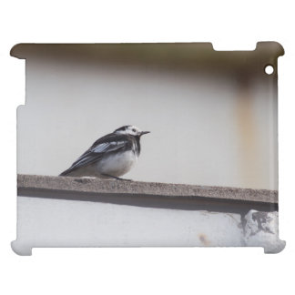 Pied Wagtail iPad Mobil Skydd