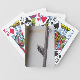Pied Wagtail Spelkort