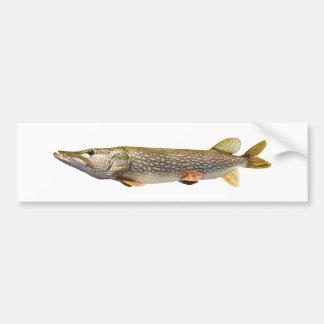 Pike Muski fiske Bildekal