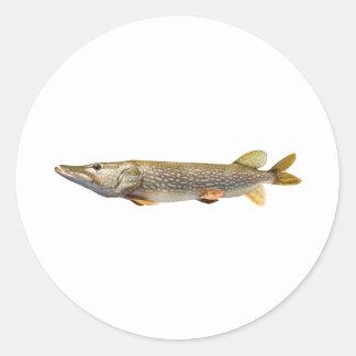 Pike Muski fiske Runt Klistermärke
