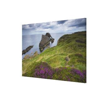 Pilbågelurendrejeristen, Portknockie, Skottland Canvastryck