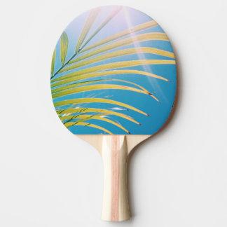 Pingen Pong för palmträdet för realitetvibesen Pingisracket