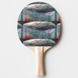 Pingen Pong paddlar Goodluck framgångKONST Pingisracket