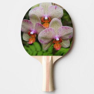 Pingen Pong paddlar - orchiden Pingisracket