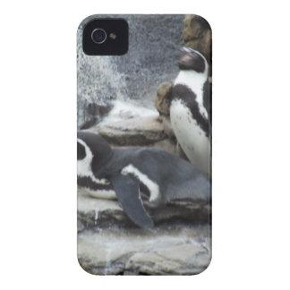 Pingvin Case-Mate iPhone 4 Skydd