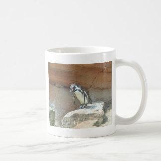 Pingvin djurliv, djur, vildfågel, Zoo, sommar Kaffemugg