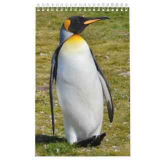 Pingvin-Pedia: Pingvin av världen Kalender