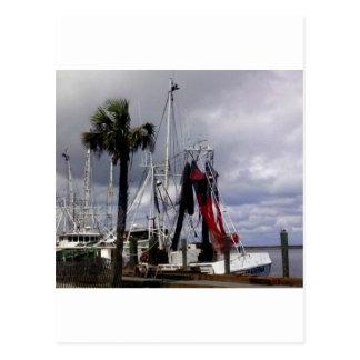 Pirater Ahoy Vykort
