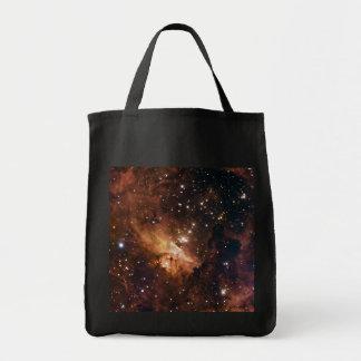 Pismis 24 brun stjärnaNASA Tygkasse