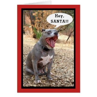 Pitbull Hey Santa julkort Hälsningskort