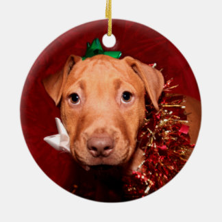 Pitbull valpjul julgransprydnad keramik