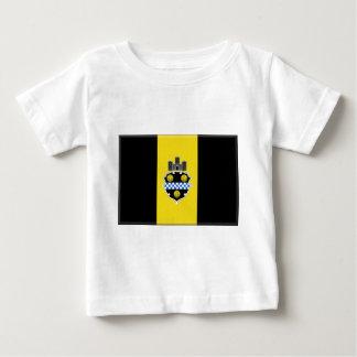 Pittsburgh flagga t shirts