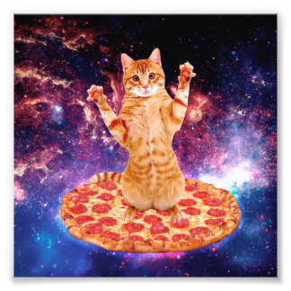 pizzakatten - orange katt - göra mellanslag katten fototryck