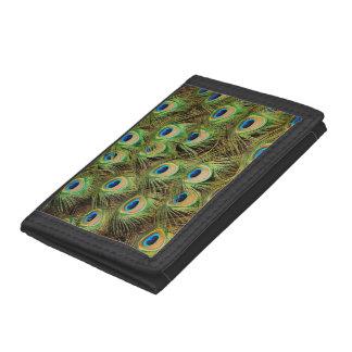 Plånbok för tryck för påfågelfjädermönster