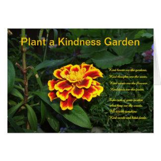 Plantera ett vänlighetträdgårdkort OBS kort
