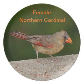 Plätera visningen den kvinnliga nordliga kardinale tallrik