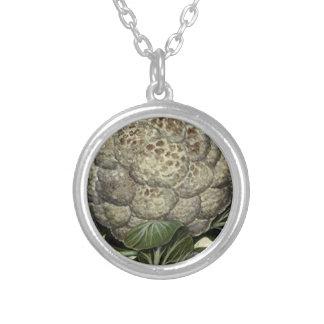Pläterat halsband för blomkål silver
