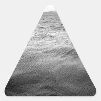 Platsen kanaliserar uddhornen Chile Triangelformat Klistermärke