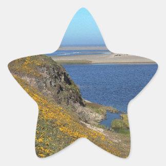 Platsen pekar den Reyes seashoren Kalifornien Stjärnformade Klistermärken