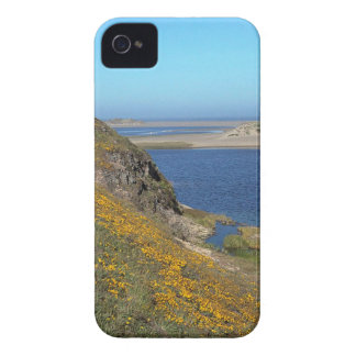Platsen pekar den Reyes seashoren Kalifornien iPhone 4 Case-Mate Skydd