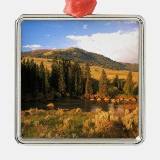 PlatsLamar dal Yellowstone Wyoming Julgransprydnad Metall