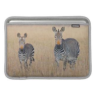 Plattar till sebran (Equusquagga) med fölet MacBook Air Sleeve