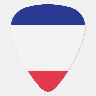 Plocka för frankrikeflaggagitarr för fransk gitarr pick
