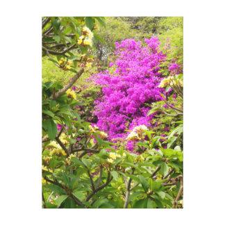 Plumeria och Bougainvillea Sträckta Kanvas Tryck