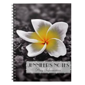 PlumeriaFrangipaniHawaii blomma Anteckningsbok