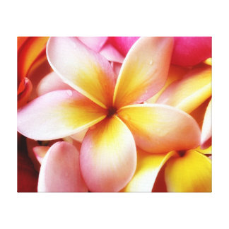 PlumeriaFrangipaniHawaii blomma skräddarsy tomt Canvastryck