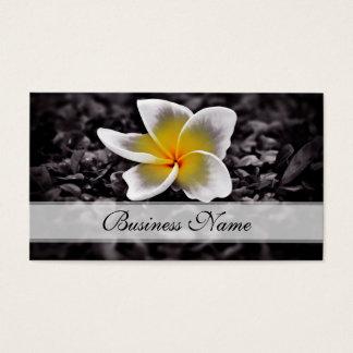 PlumeriaFrangipaniHawaii blommor Visitkort