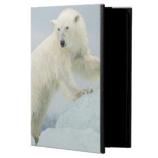 Polar björn i sommar fodral för iPad air