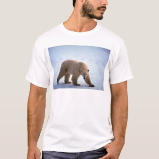 Polar björn på snö tee