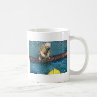 Polar björn Playing.jpg Kaffemugg