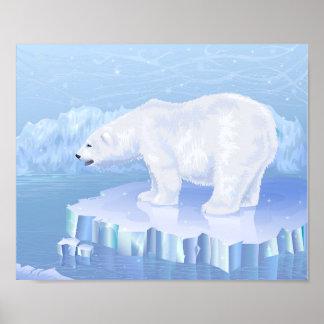 Polar björnaffisch poster