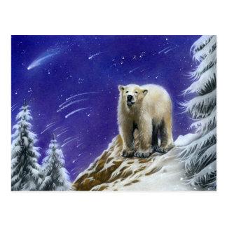 Polar björnvykort för nordligt ljus vykort
