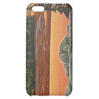 Polar iphone case för konst för björn för fodral iPhone 5C mobil fodral