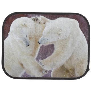Polarbjörnar som munhuggas 2 bilmatta