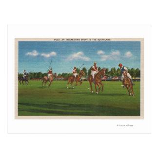 Poloplats med spelare och hästar på gräsmatta vykort