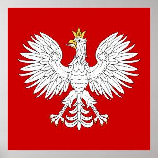 Polsk örn poster