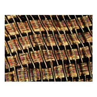Polyester från en skjorta under mikroskopet vykort