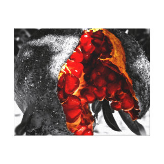 Pomegranate Canvastryck